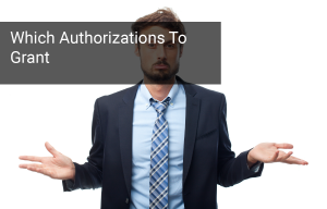 Which SAP Authorizations Should He Have?