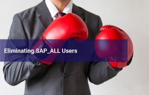 The Dreaded SAP_ALL Power Profile