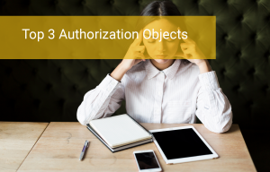 The Three Top Authorization Objects: What Are They?